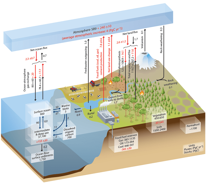 Focus COP 26 – Le sol comme solution climatique