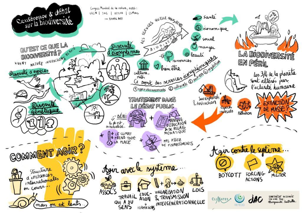 """Nos deux ateliers """"jeunesse et biodiversité"""" au sommet mondial de la jeunesse de l'UICN"""